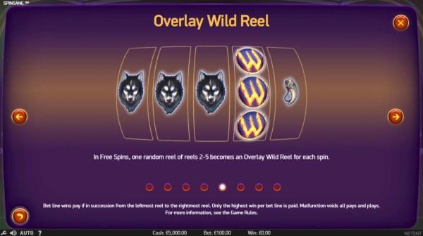 Casino Codes image of Spinsane