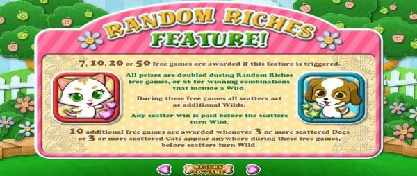 Random Riches Feature Rules - Casino Codes