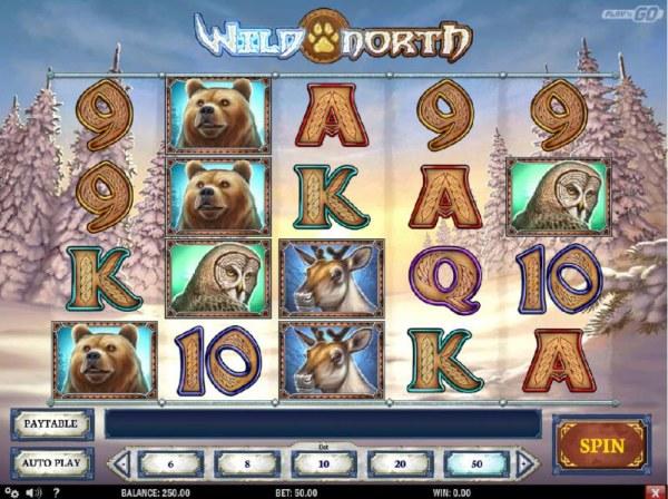 Wild North by Casino Codes