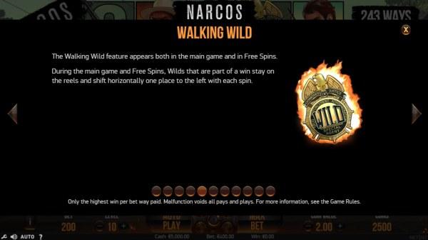 Wild Symbols Rules - Casino Codes