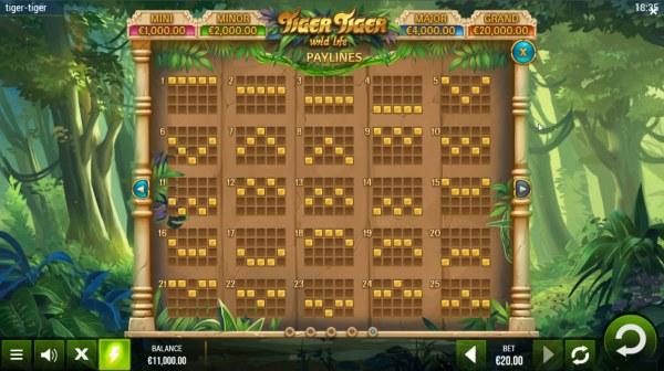 Tiger Tiger Wild Life screenshot